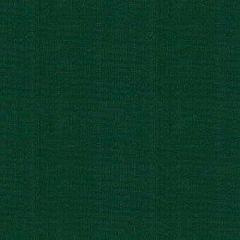 Kravet Sunbrella Canvas Green 25703-31 Soleil Collection Upholstery Fabric