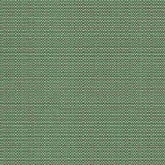 Kravet Design Green 31777-615 Barclay Butera Collection Upholstery Fabric