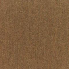 Sunbrella RAIN Canvas Teak 5488-0000 77 Waterproof Upholstery Fabric