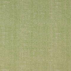 Sunbrella Thibaut Zara Texture Kiwi W80002 Portico Collection Upholstery Fabric