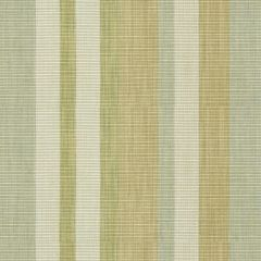 Kravet Middle Kingdom Celadon 31478-23 by Barbara Barry Indoor Upholstery Fabric