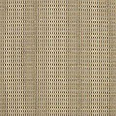 Sunbrella Cameron-Pebble 50182-0001 Sling Upholstery Fabric