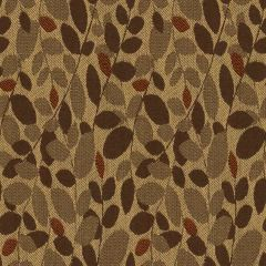 Kravet Contract Branch Out Rattan 32250-6 Indoor Upholstery Fabric