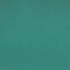 Olympus Boltasport Turquoise OLY135 Multipurpose Upholstery Fabric