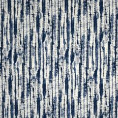 Silver State Sunbrella Quark Avalanche Roman Holidays Collection Upholstery Fabric