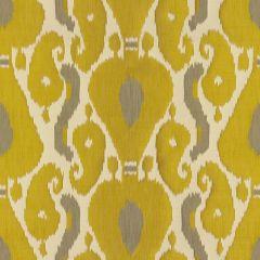 Kravet Ornamental Ikat Quince 3717-311 Drapery Fabric