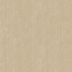 Kravet Contract Strie Velvet 33353-1116 Guaranteed in Stock Indoor Upholstery Fabric