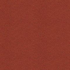Kravet Contract Izzie Mesa 32267-24 Crypton Incase Collection Indoor Upholstery Fabric