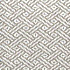 Sunbrella Thibaut Parterre Flax W80331 Calypso Collection Upholstery Fabric