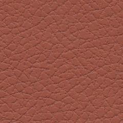 Ultrafabrics Brisa 303-5245 Cinnabar Upholstery Fabric