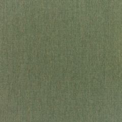 Sunbrella RAIN Canvas Fern 5487-0000 77 Waterproof Upholstery Fabric