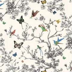 F Schumacher Birds & Butterflies-Multi On White 2704420 Luxury Decor Wallpaper
