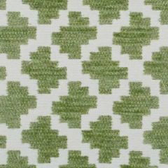 Duralee Grass 15575-597 Decor Fabric