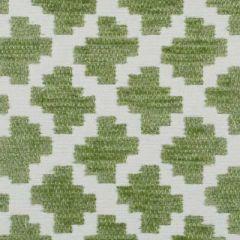 Duralee Grass 15575-597 Decor Fabric