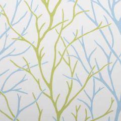 Duralee Aqua/Green 21043-601 Decor Fabric