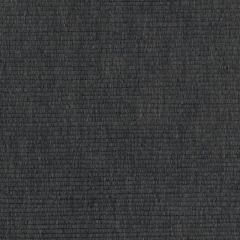 Perennials Swanky Grey Matter Uncorked Collection Upholstery Fabric