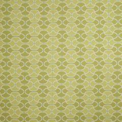 Fabricut Bella Dura Pran-Lime Splash 68702 Upholstery Fabric