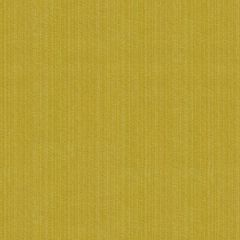Kravet Contract Strie Velvet 33353-123 Guaranteed in Stock Indoor Upholstery Fabric