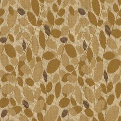 Kravet Contract Branch Out Honey 32250-411 Indoor Upholstery Fabric