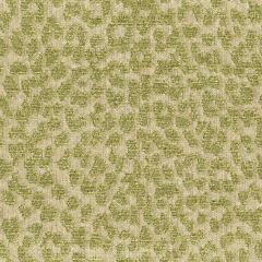 Kravet Contract Hutcherleigh Spring 32485-316 by Candice Olson Indoor Upholstery Fabric