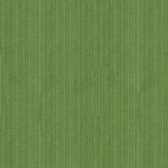 Kravet Contract Strie Velvet 33353-130 Guaranteed in Stock Indoor Upholstery Fabric