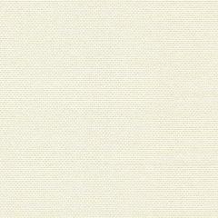 Kravet Sunbrella White 31435-101 by Barbara Barry Upholstery Fabric
