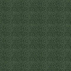 Fabricut Weisbecker Malachite 33580 Chromatics Collection Multipurpose Fabric