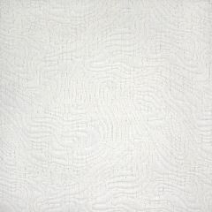 Silver State Sunbrella Seismic Snow Roman Holidays Collection Upholstery Fabric