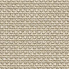 Kravet Sunbrella Weaver Flax 30828-16 Soleil Collection Upholstery Fabric