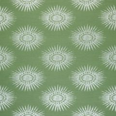Sunbrella Thibaut Bahia Woven Green W80777 Solstice Collection Upholstery Fabric