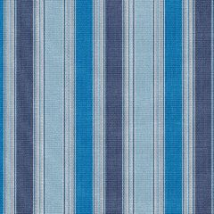 Tempotest Home Piccolo Baltic 5415-87 Fifty Four Collection Upholstery Fabric