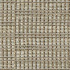 Kravet Pongee Cinder 9889-16 Drapery Fabric