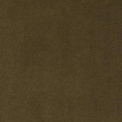 Duralee Luggage 15619-114 Decor Fabric