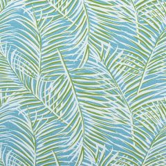 Sunbrella Thibaut West Palm Woven Kiwi on Spa Blue W80563 Oasis Collection Upholstery Fabric