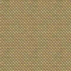 Kravet Sunbrella Polo Texture Dove 31938-6 Oceania Indoor Outdoor Collection Upholstery Fabric