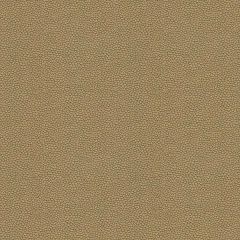 Kravet Contract Izzie Mica 32267-404 Crypton Incase Collection Indoor Upholstery Fabric