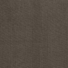 Fabricut Nakhon-Charcoal 55502  Decor Fabric