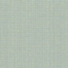 Sunbrella by CF Stinson Contract Catalina Ariel 63503 Upholstery Fabric