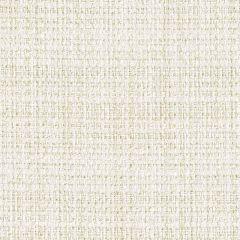 Perennials Homespun Sea Salt No Hard Feelings Collection Upholstery Fabric