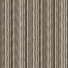 Outdura Jinga Granite 208J The Ovation II Collection - Reversible Upholstery Fabric