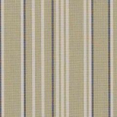 Sunbrella Sintra Green SJA 3975 137 European Collection Upholstery Fabric