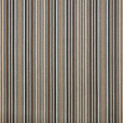 Sunbrella Makers Collection Cultivate Stone 56107-0000 Upholstery Fabric
