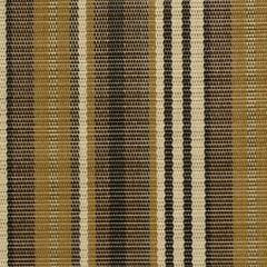 Phifertex Saylor Stripe Sepia NN5 54-inch Sling / Mesh Upholstery Fabric