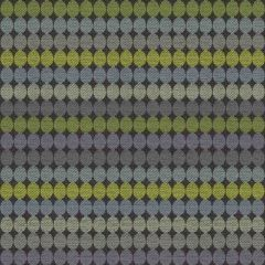 Kravet Contract Grab Bag Rainforest 34656-35 Guaranteed In Stock Collection Indoor Upholstery Fabric
