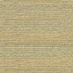 Kravet Sunbrella Melanger Vapor 31695-1615 The Echo Design Collection Upholstery Fabric