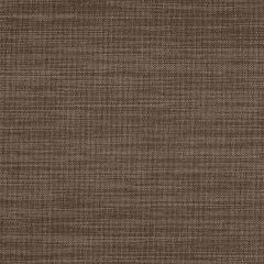 Sunbrella Augustine Espresso 5928-0017 Sling Upholstery Fabric
