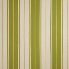 Fabricut Bella Dura Valmy-Lime 68905 Upholstery Fabric