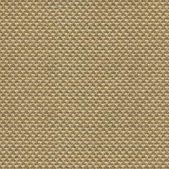Kravet Sunbrella Polo Texture Driftwood 31938-106 Oceania Indoor Outdoor Collection Upholstery Fabric