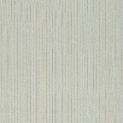 F. Schumacher Rain Shadow Stripe Moonstone 67501 Au Natural Collection