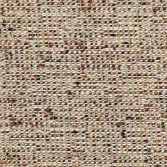 Kravet Contract Brown 34635-916 Crypton Incase Collection Indoor Upholstery Fabric